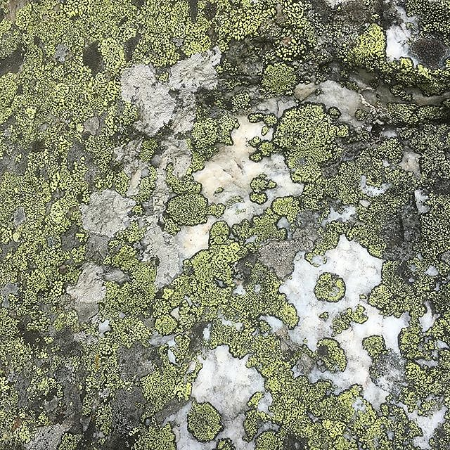 #lichen #europahütte #europaweg #zermatt